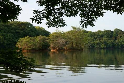 Lake at Sasaguri