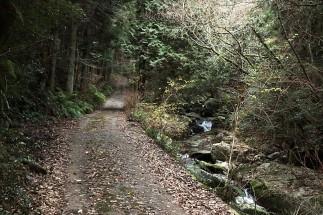 road to Karanno Falls